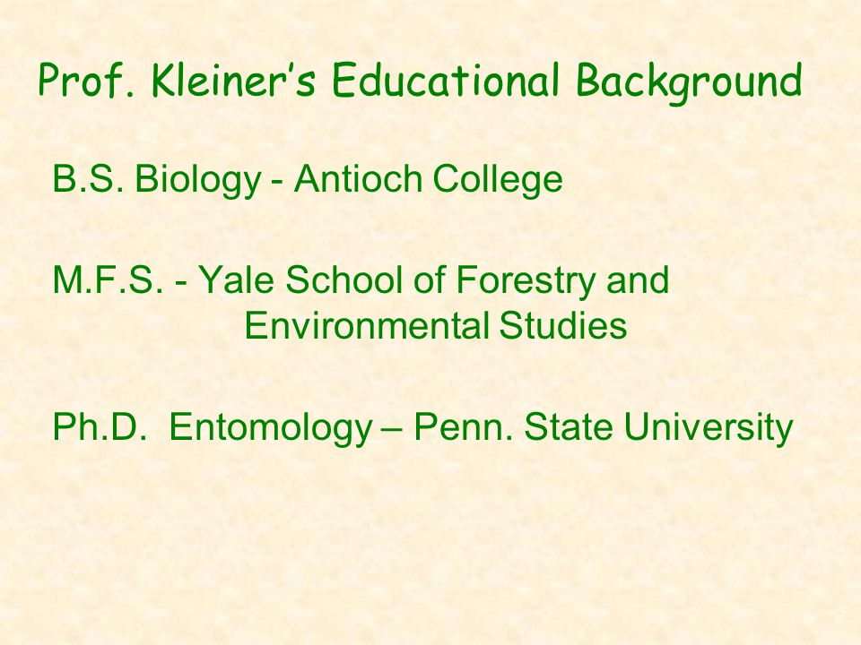 Prof. Kleiner's Educational Background