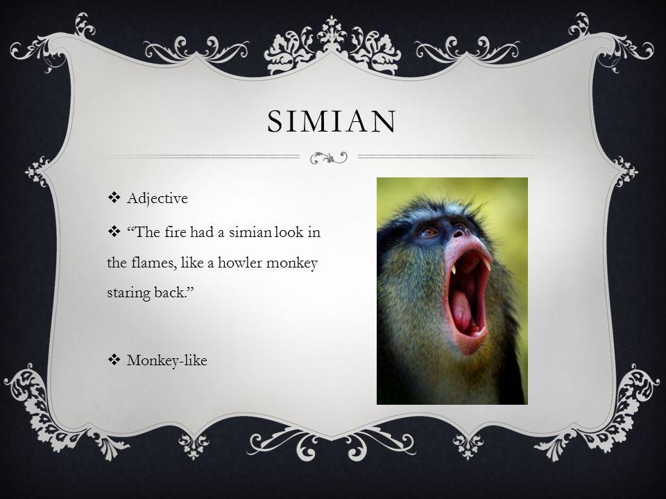 SimIAn Adjective.