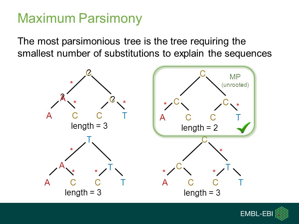 Maximum Parsimony The most parsimonious tree is the tree requiring the smallest number of substitutions to explain the sequences.