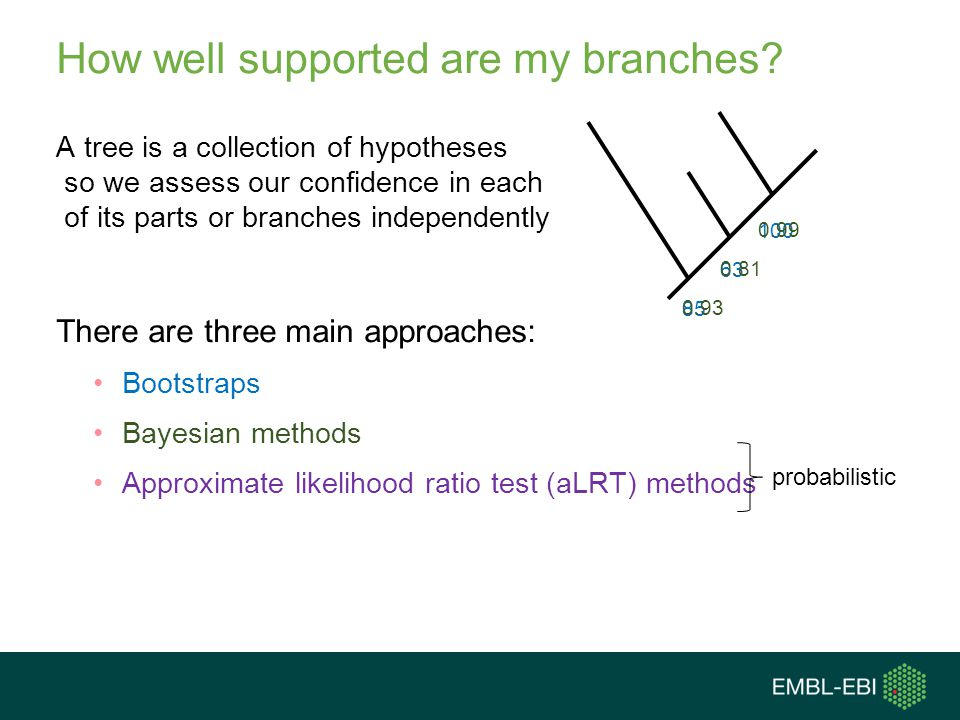 How well supported are my branches