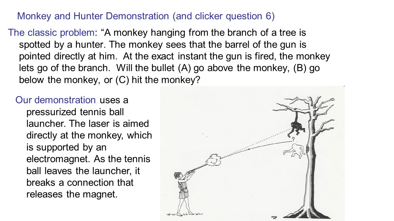 Monkey and Hunter Demonstration (and clicker question 6)