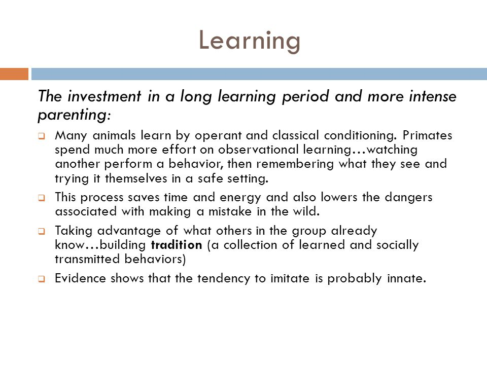 Learning The investment in a long learning period and more intense parenting: