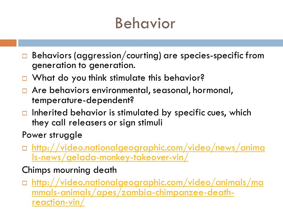 Behavior Behaviors (aggression/courting) are species-specific from generation to generation. What do you think stimulate this behavior