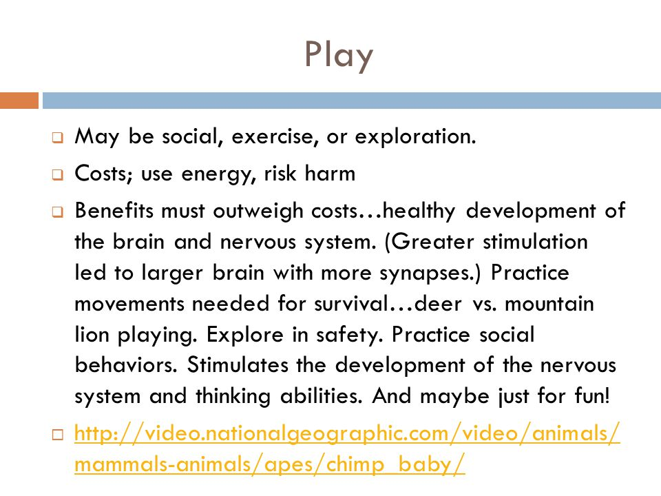 Play May be social, exercise, or exploration.
