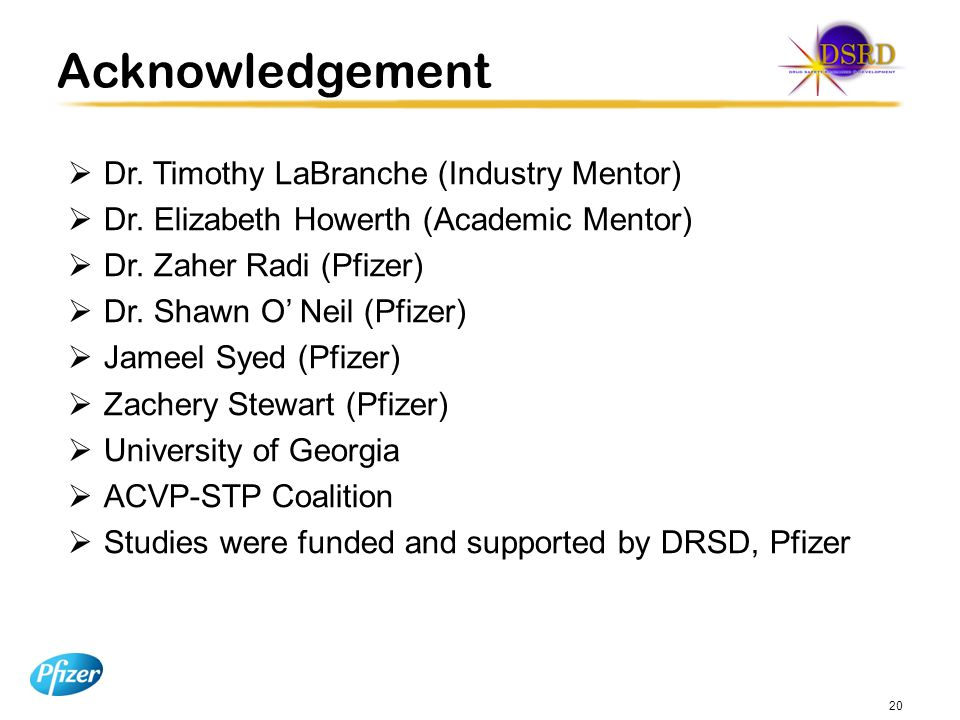 Acknowledgement Dr. Timothy LaBranche (Industry Mentor)