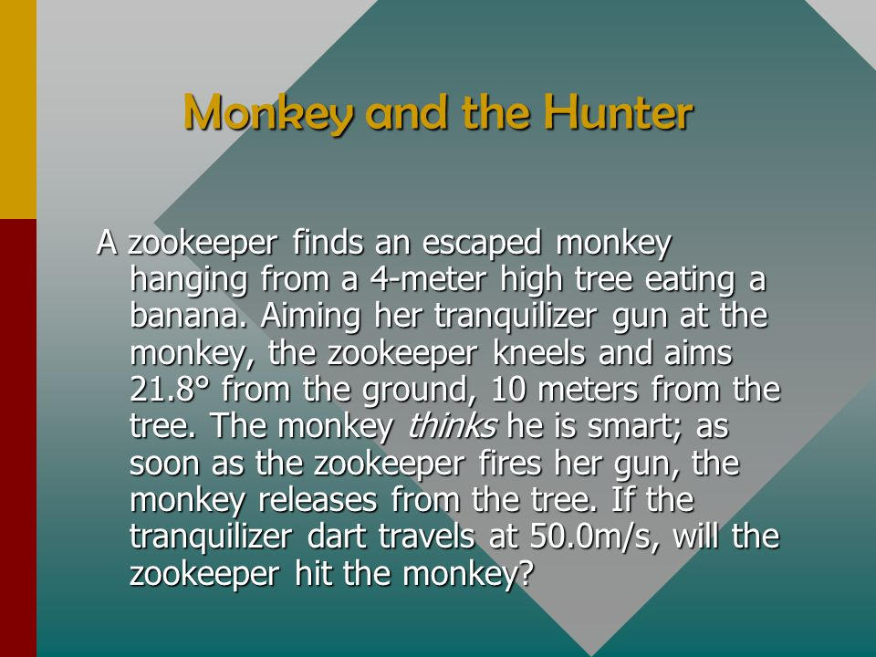 Monkey and the Hunter