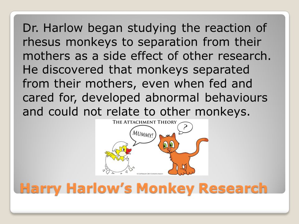 Harry Harlow's Monkey Research