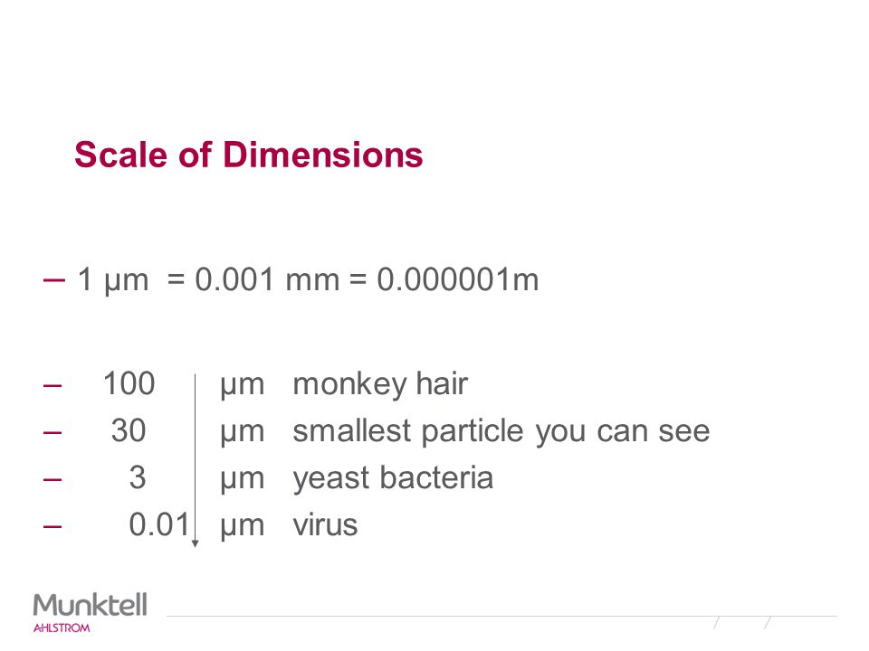 1 µm = 0.001 mm = 0.000001m Scale of Dimensions 100 µm monkey hair