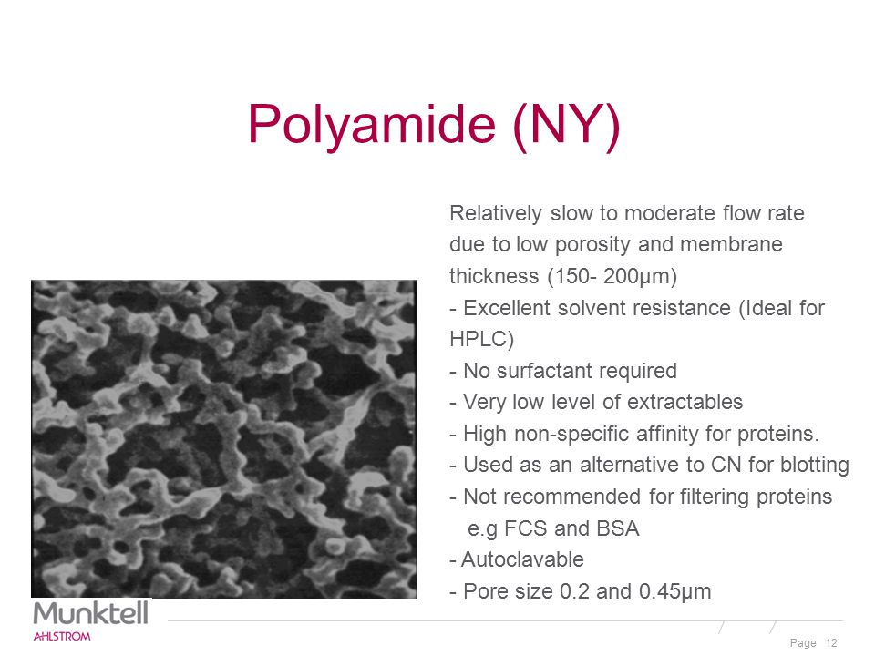 Polyamide (NY)