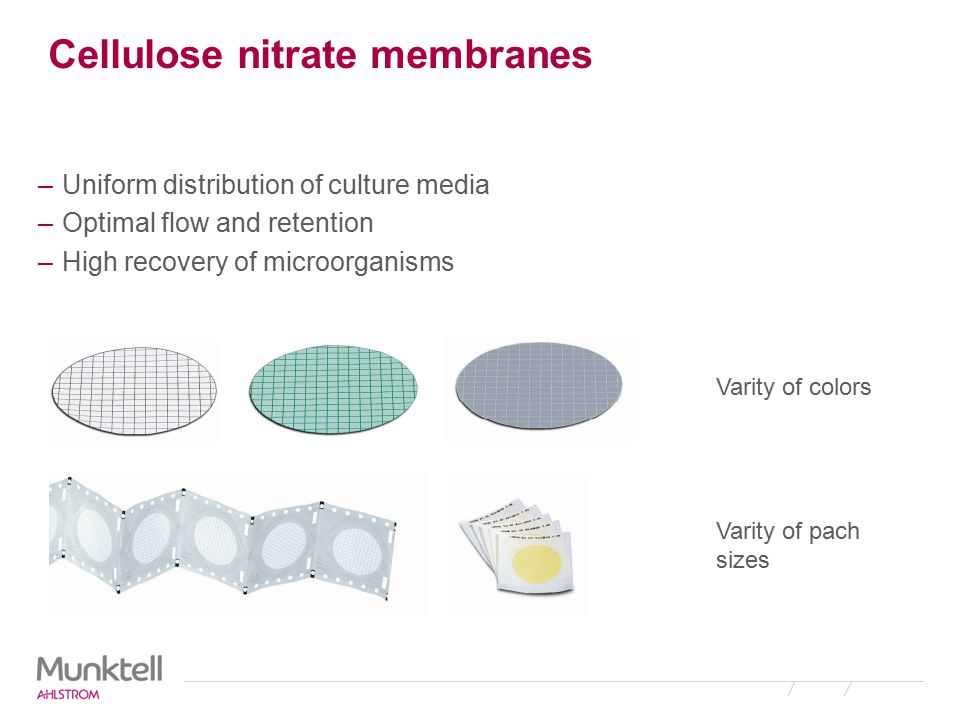 Cellulose nitrate membranes