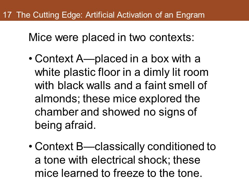 17 The Cutting Edge: Artificial Activation of an Engram