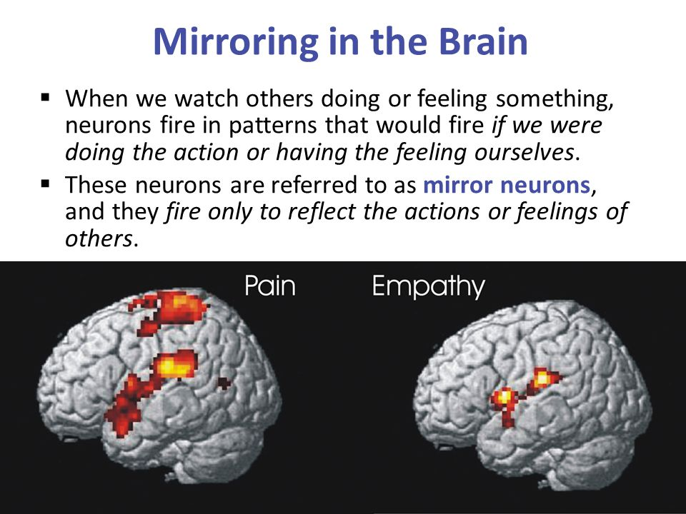 Mirroring in the Brain