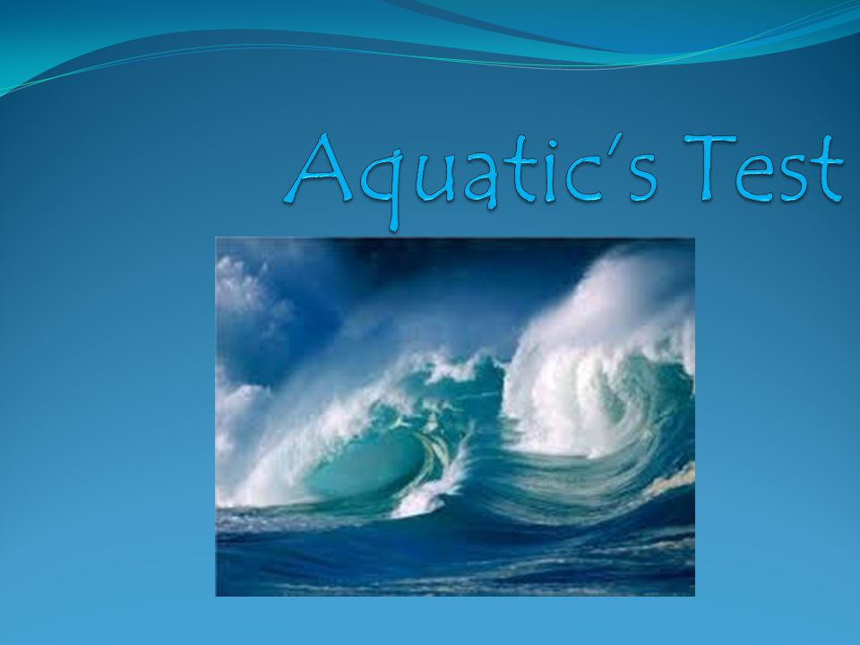 Aquatic's Test