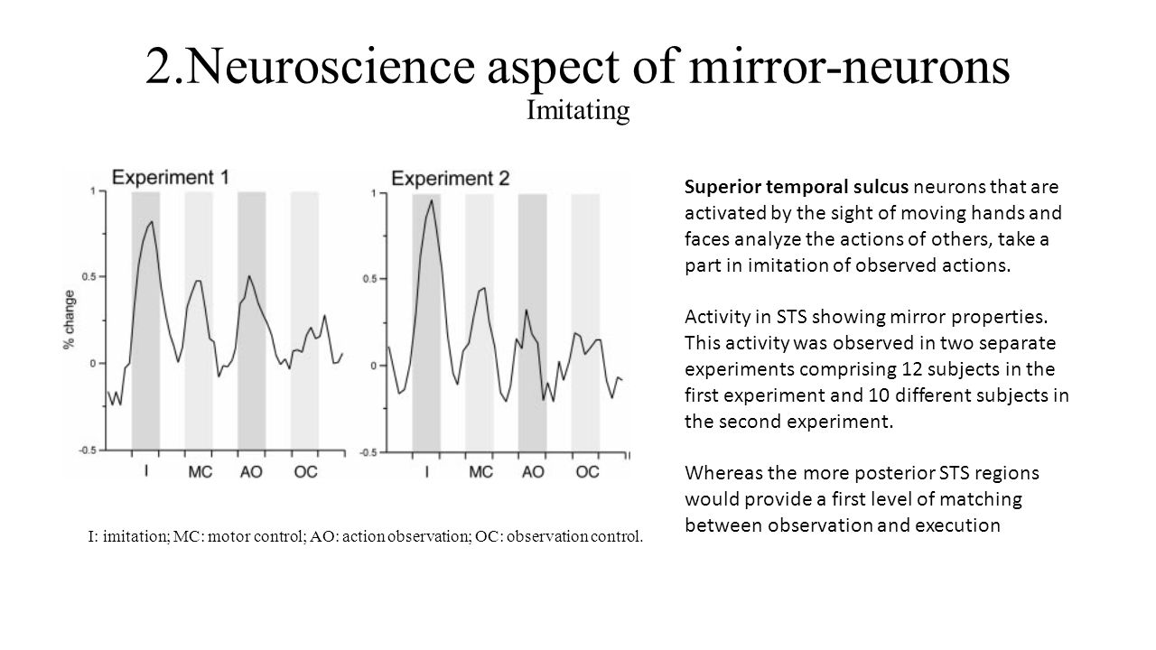 2.Neuroscience aspect of mirror-neurons Imitating