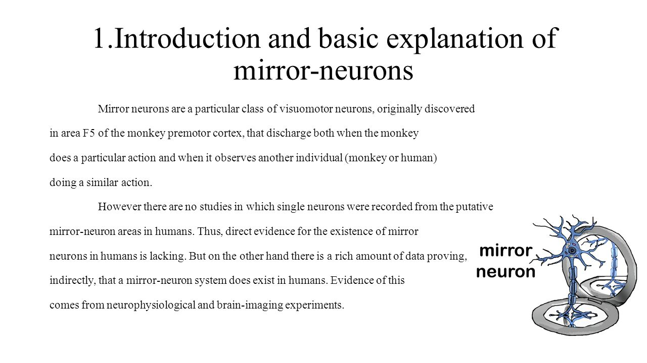 1.Introduction and basic explanation of mirror-neurons