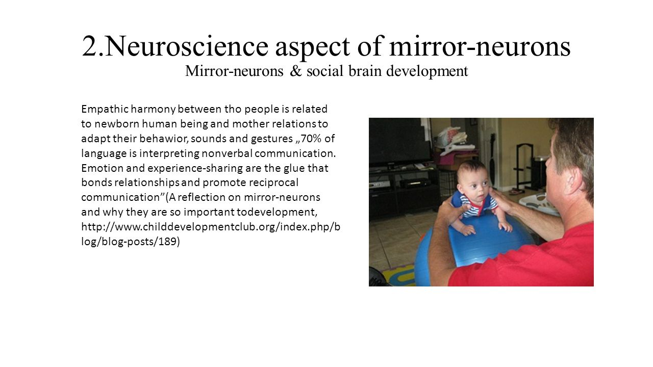 2.Neuroscience aspect of mirror-neurons Mirror-neurons & social brain development