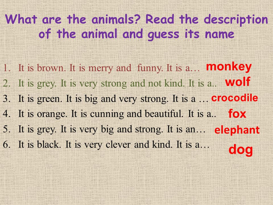 What are the animals Read the description of the animal and guess its name
