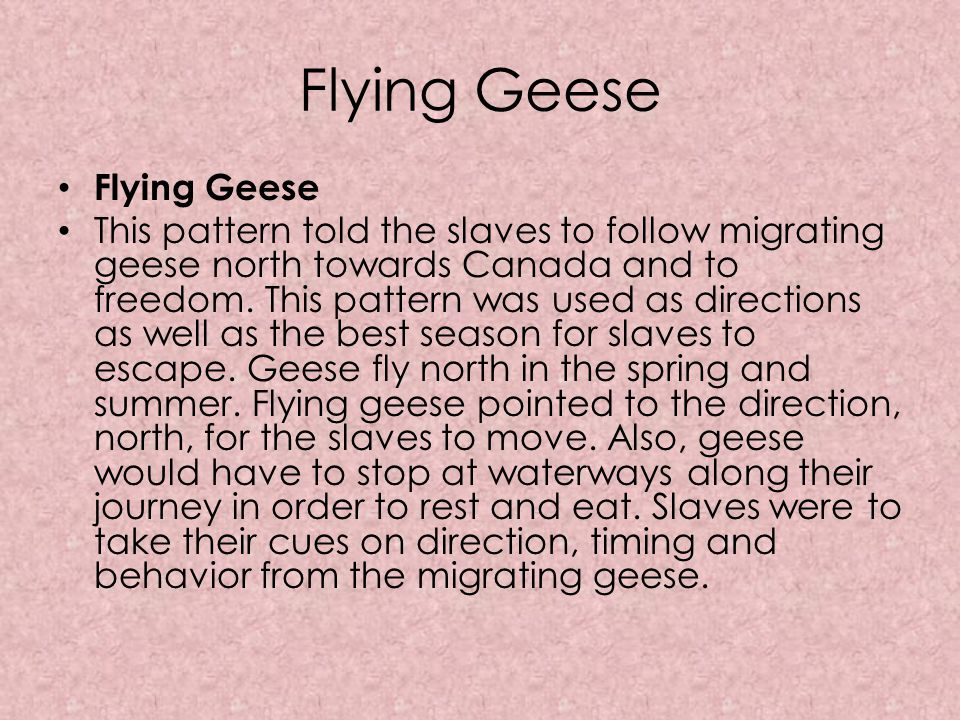Flying Geese Flying Geese