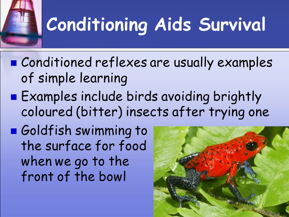 Conditioning Aids Survival
