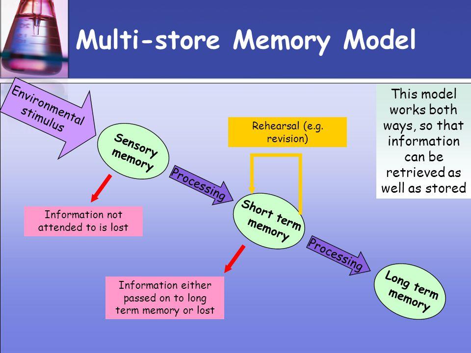 Multi-store Memory Model