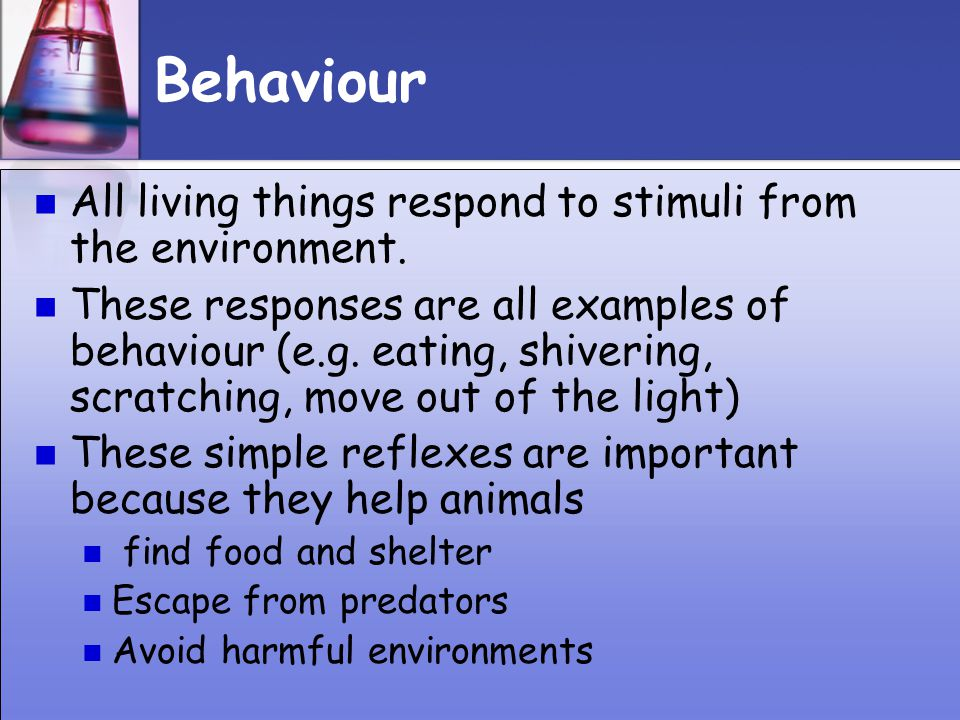 Behaviour All living things respond to stimuli from the environment.