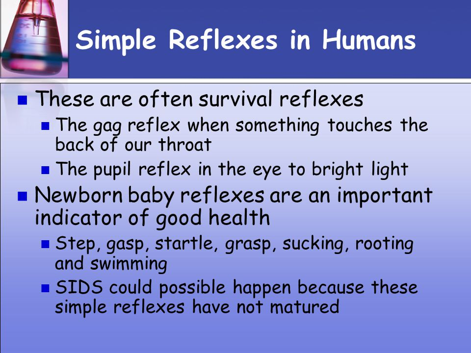 Simple Reflexes in Humans