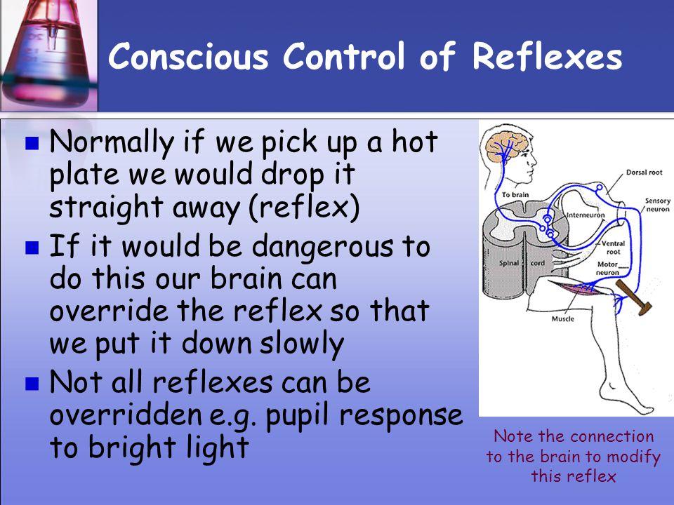 Conscious Control of Reflexes