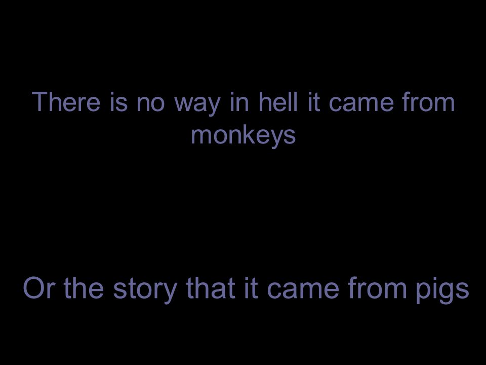 There is no way in hell it came from monkeys