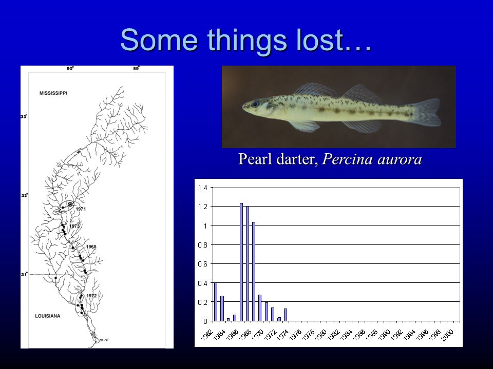 Some things lost… Pearl darter, Percina aurora