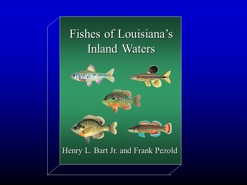 Fishes of Louisiana's Inland Waters Henry L. Bart Jr. and Frank Pezold