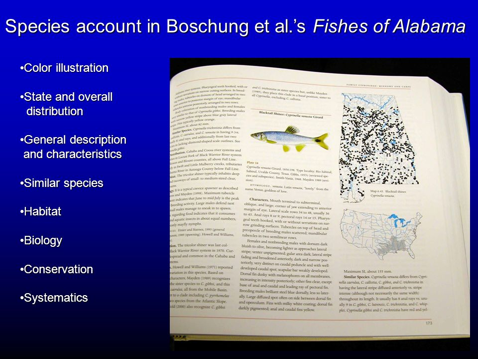 Species account in Boschung et al.'s Fishes of Alabama