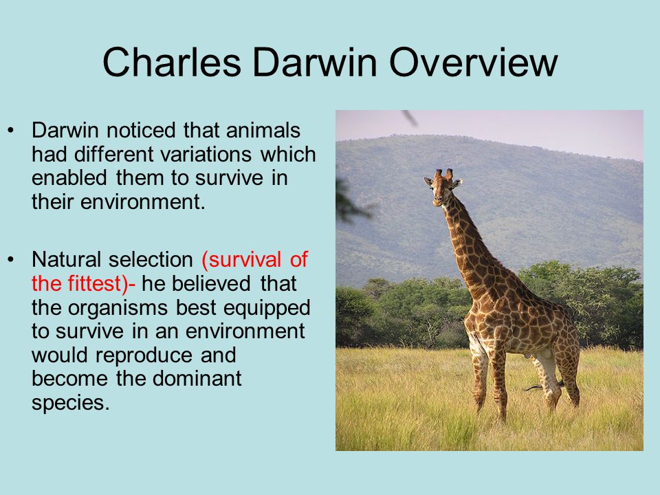 Charles Darwin Overview