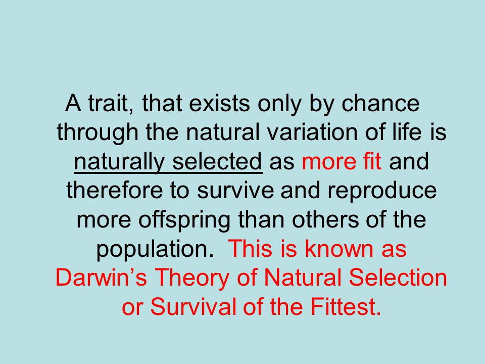 A trait, that exists only by chance through the natural variation of life is naturally selected as more fit and therefore to survive and reproduce more offspring than others of the population.