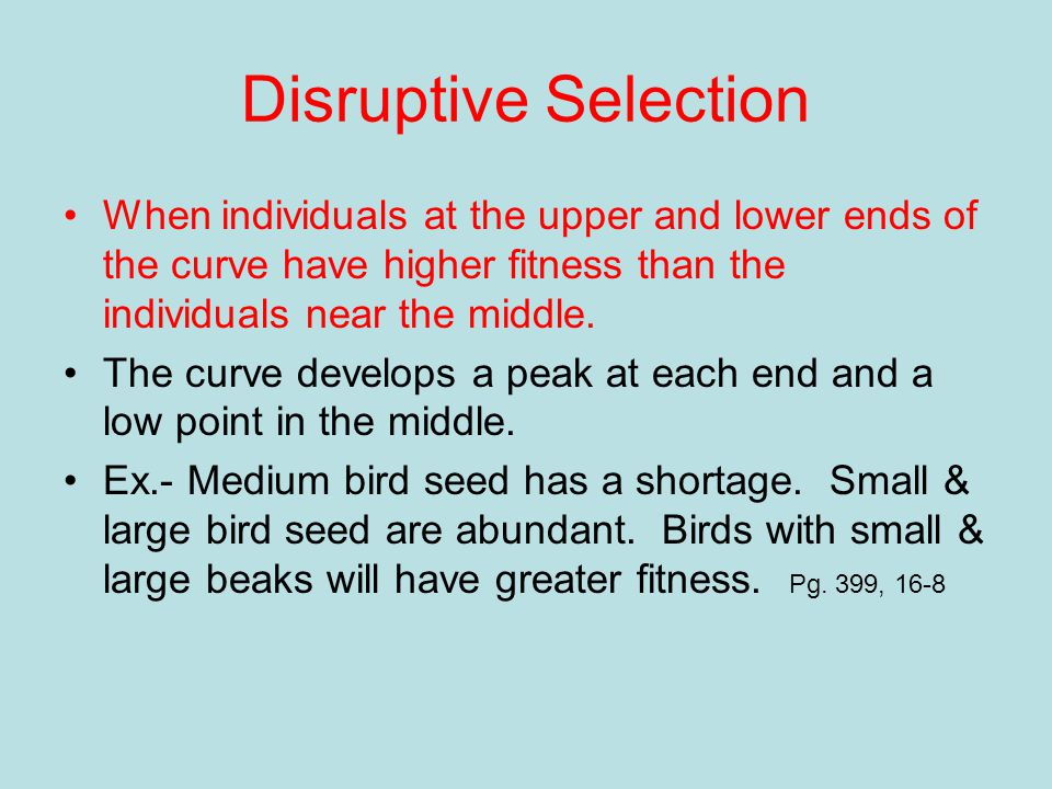 Disruptive Selection When individuals at the upper and lower ends of the curve have higher fitness than the individuals near the middle.