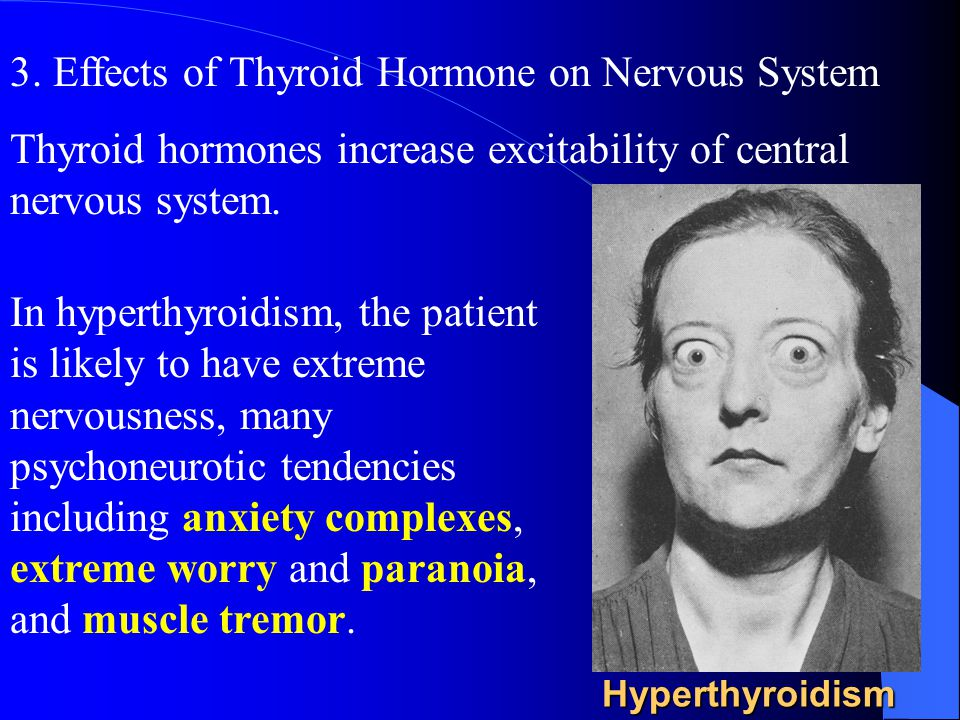3. Effects of Thyroid Hormone on Nervous System