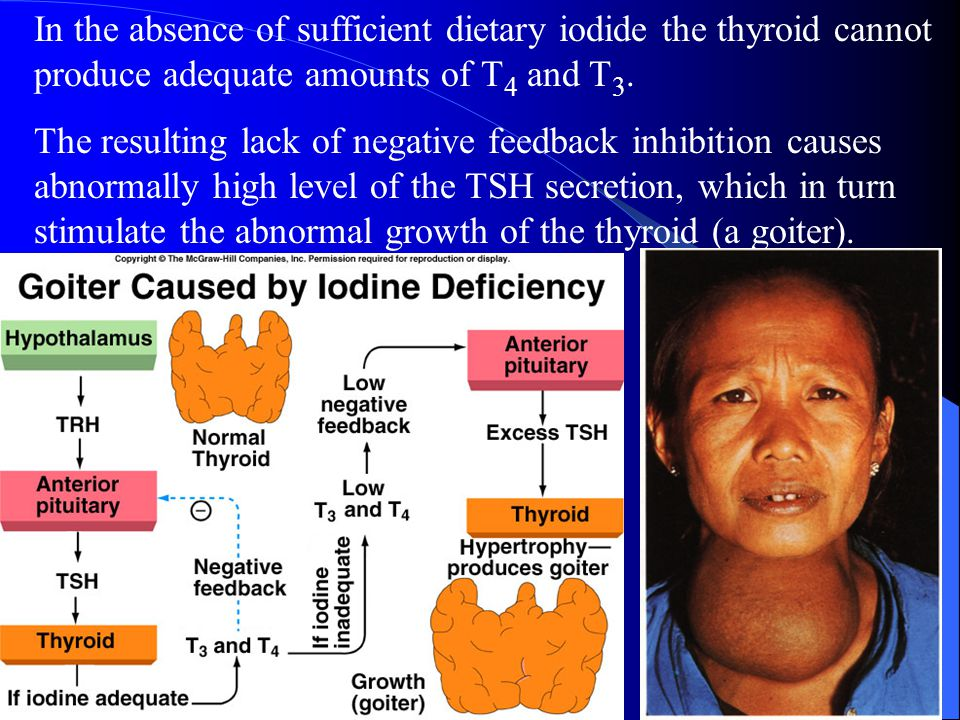 In the absence of sufficient dietary iodide the thyroid cannot produce adequate amounts of T4 and T3.