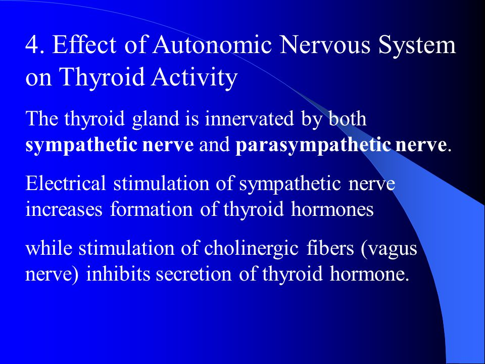4. Effect of Autonomic Nervous System on Thyroid Activity