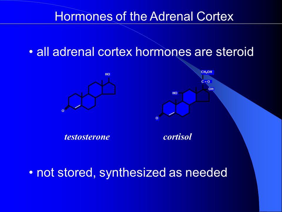 Hormones of the Adrenal Cortex