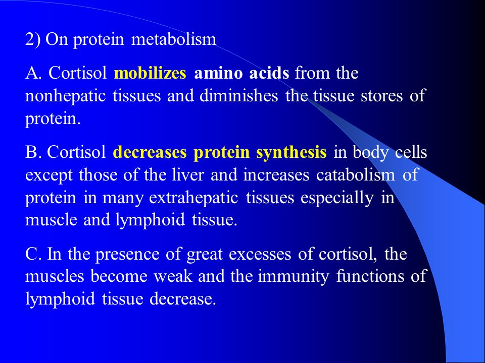 2) On protein metabolism