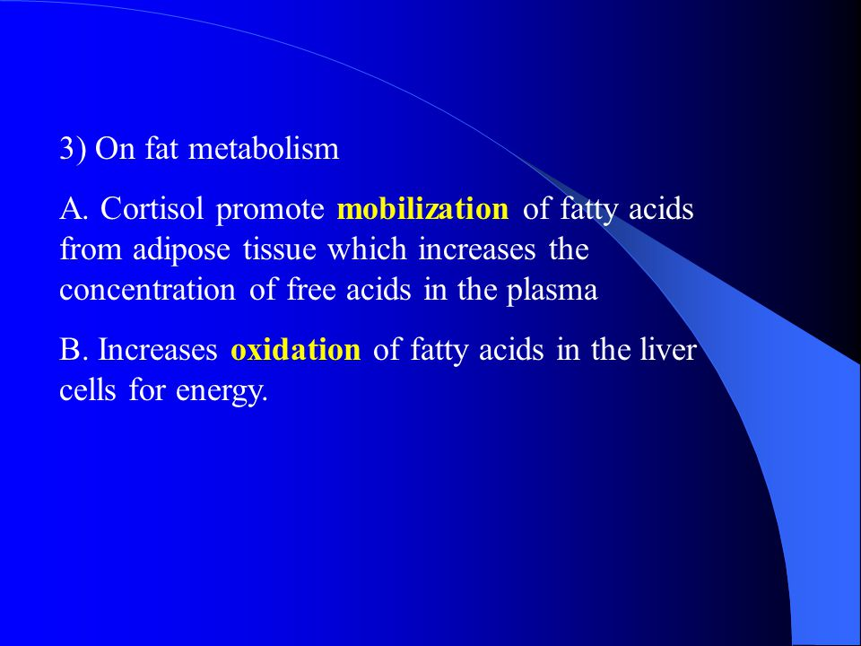 3) On fat metabolism