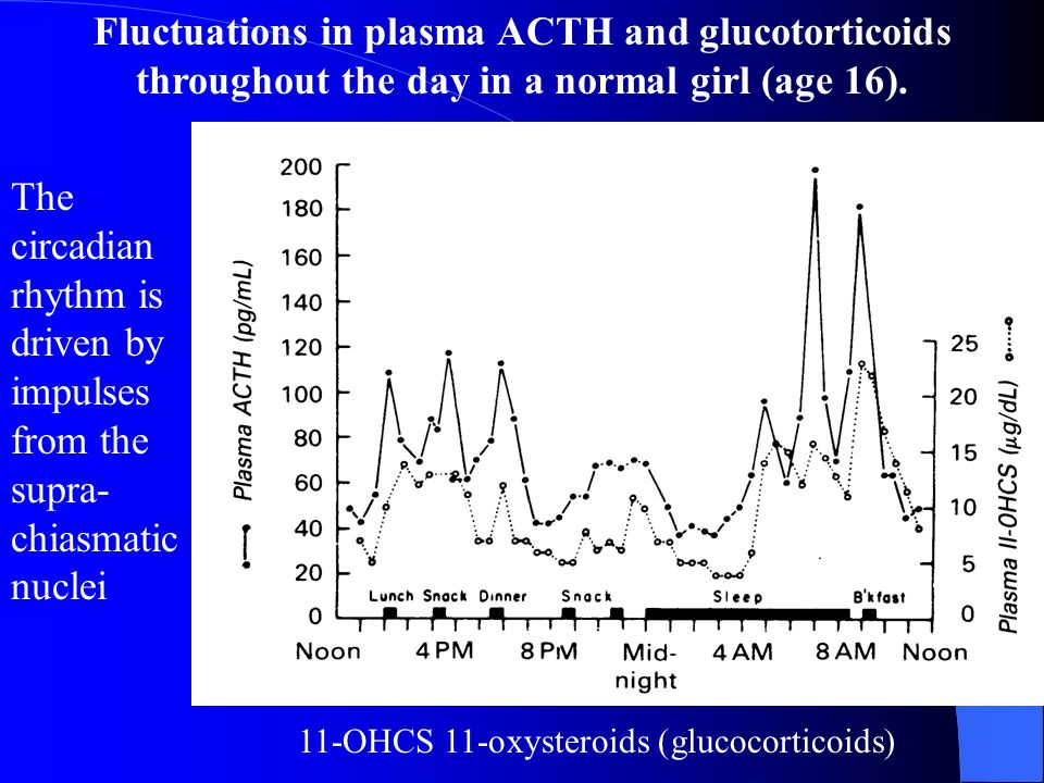 Fluctuations in plasma ACTH and glucotorticoids throughout the day in a normal girl (age 16).