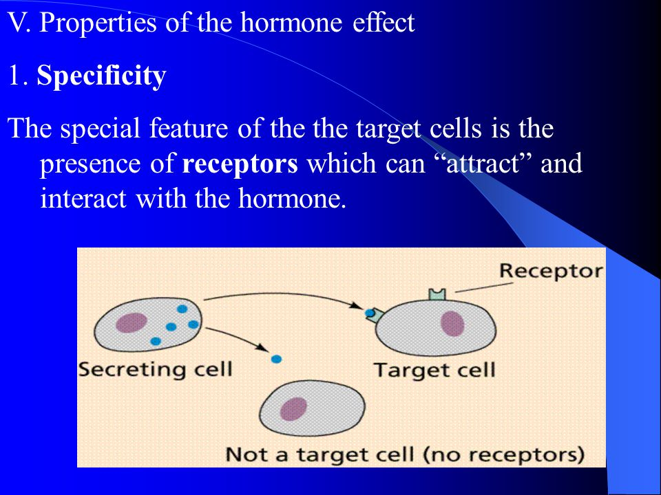 V. Properties of the hormone effect
