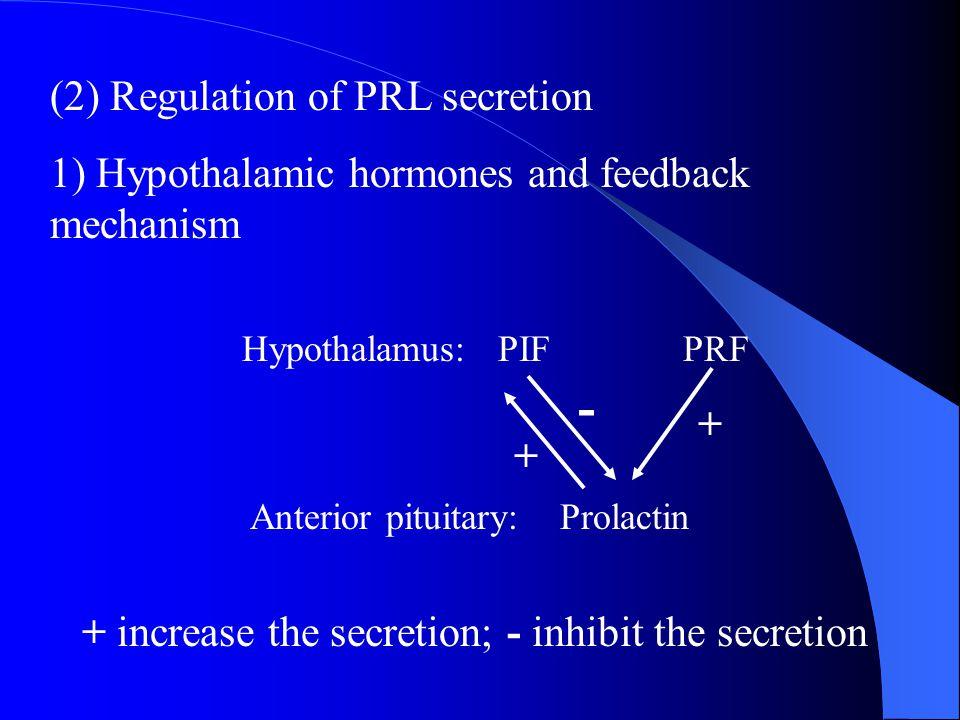 - (2) Regulation of PRL secretion