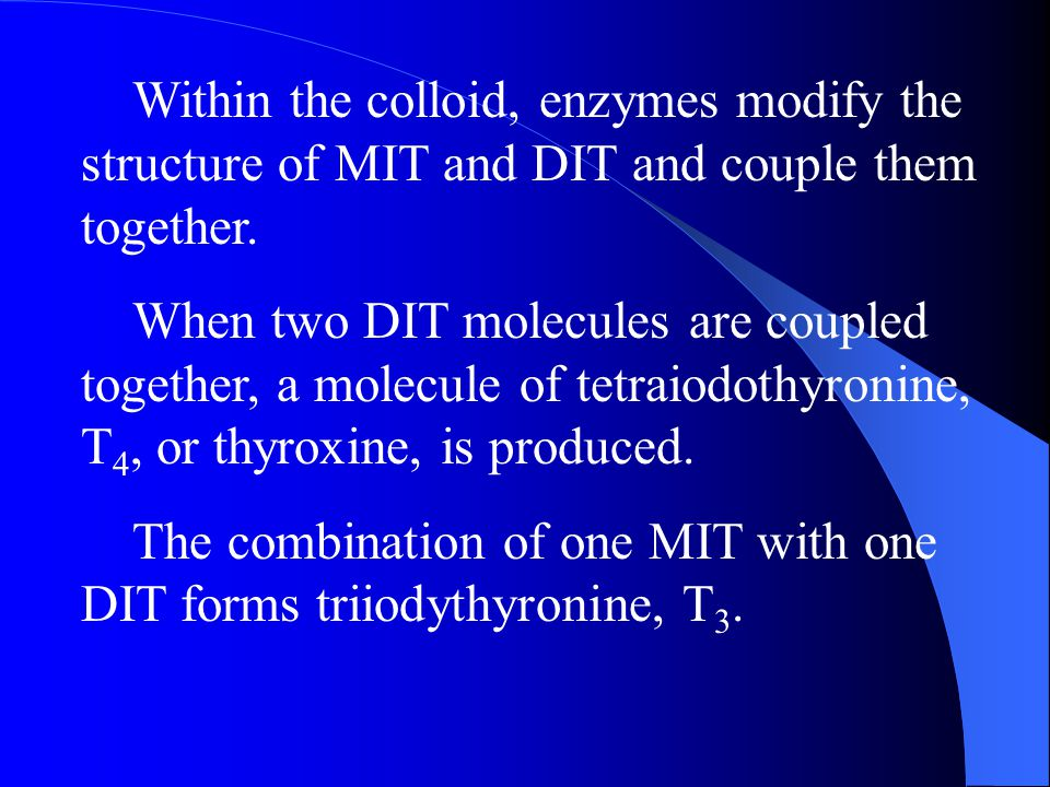 Within the colloid, enzymes modify the structure of MIT and DIT and couple them together.