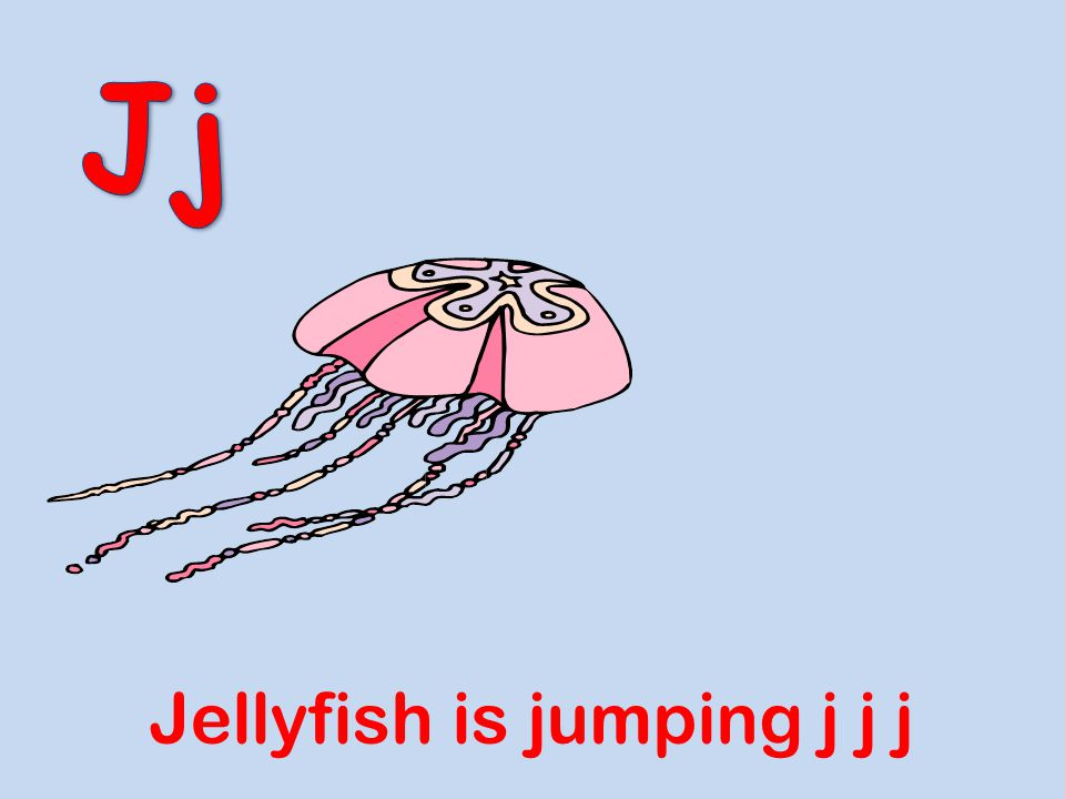 Jj Jellyfish is jumping j j j