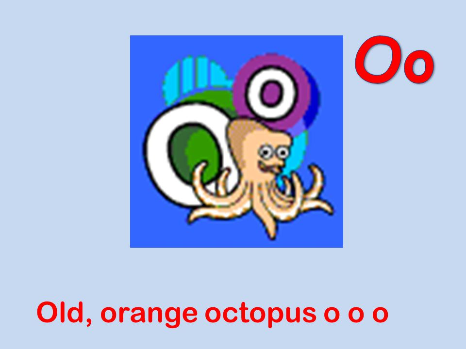 Oo Old, orange octopus o o o