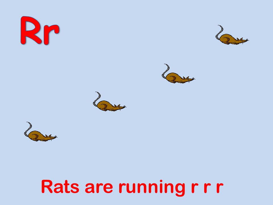 Rr Rats are running r r r