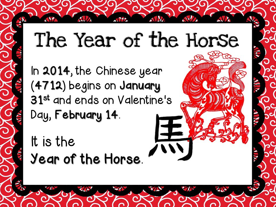 The Year of the Horse It is the Year of the Horse.