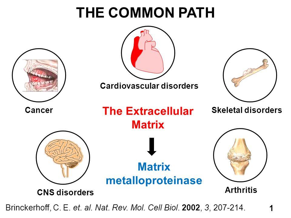 The Extracellular Matrix