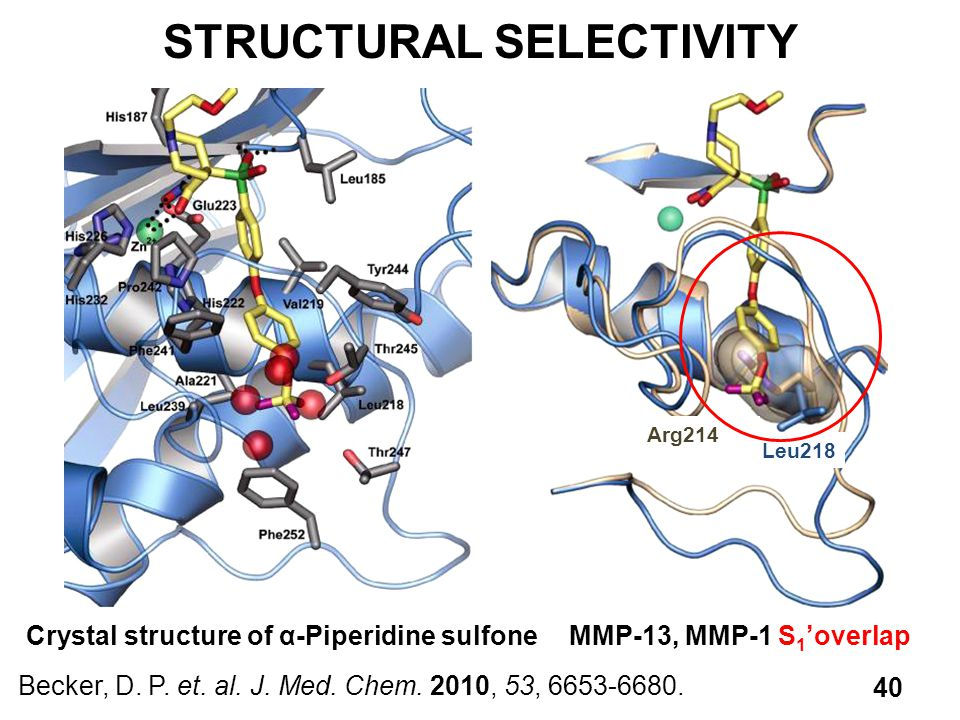 STRUCTURAL SELECTIVITY